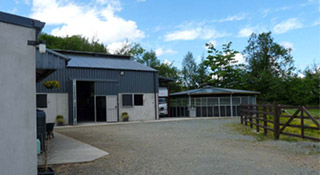 devine equine services, letterkenny